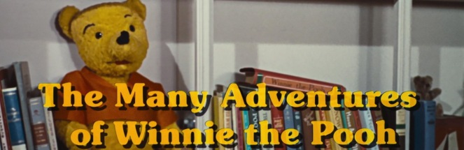17. Many Adventures of Winnie